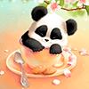 Sleepy обои Panda Версия: 2.0