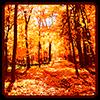 Осень обои Версия: 1.4