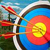 мастер по стрельбе из лука 3D Версия: 3.0