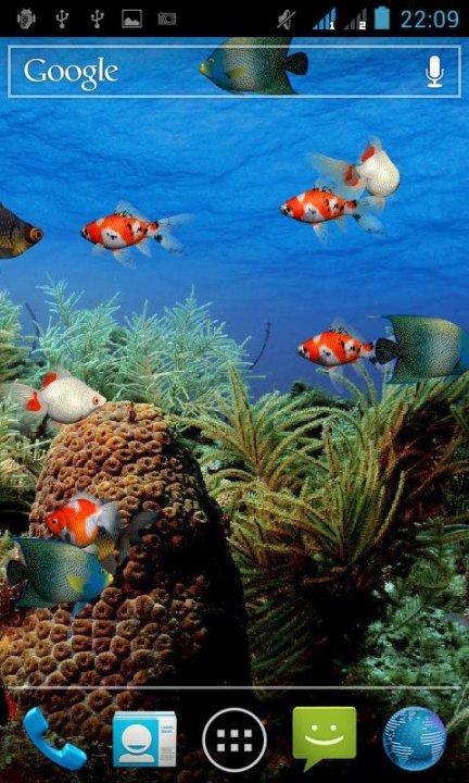 Живые обои на андроид рыбки скачать бесплатно 9