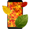 Осенние листья 3D живые обои Версия: 4.1.0.1