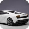 Gallardo Drift Simulator Версия: 10