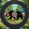 Shooting Master 3D Версия: 4.9