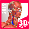 Anatomy Learning - 3D Atlas Версия: 2.1