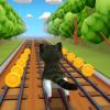 Cat Run 3D Версия: 1.0