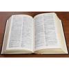 Основы Латинского языка Версия: 4.0