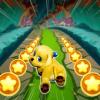 Paw Runner : Puppy Версия: 1.0.7