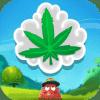 Kush Krush - Weed Match Game Версия: 1.0.84
